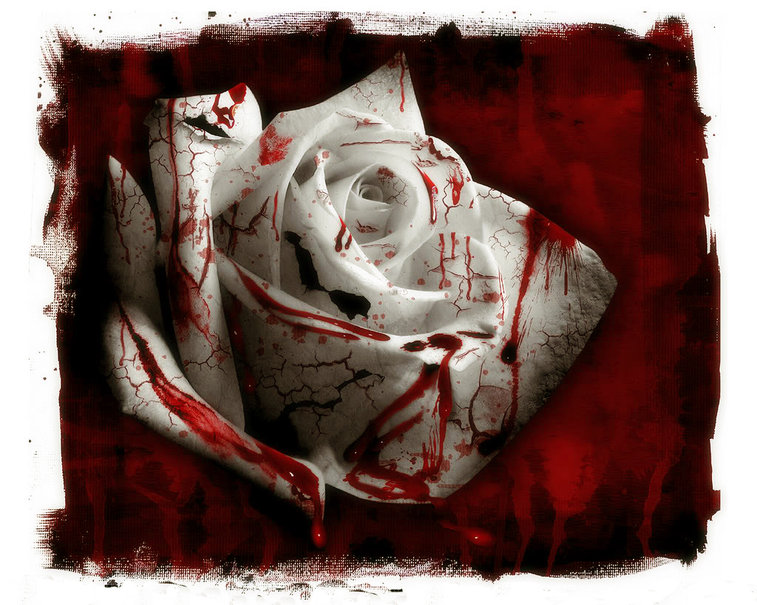 Amore e morte nei romanzi