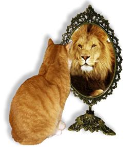 scrittore allo specchio